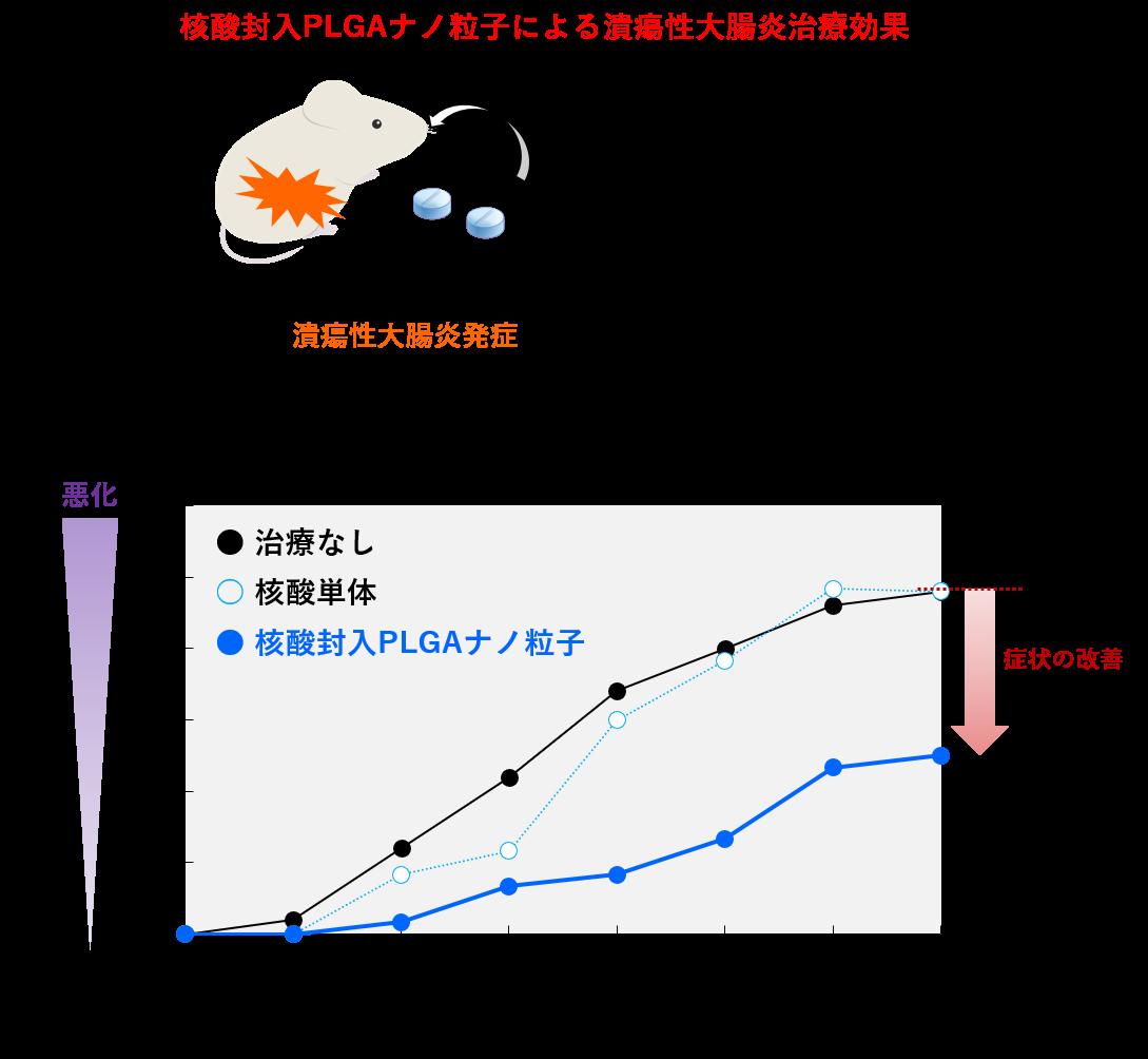 核酸封入PLGAナノ粒子による抗潰瘍性大腸炎効果