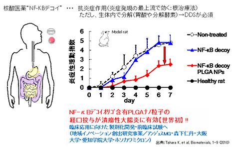 核酸(NF-kBデコイ)封入PLGAナノ粒子の経口投与おける大腸炎モデル動物への有効性 ホソカワミクロン株式会社 マテリアル事業本部 Hosokawa Micron