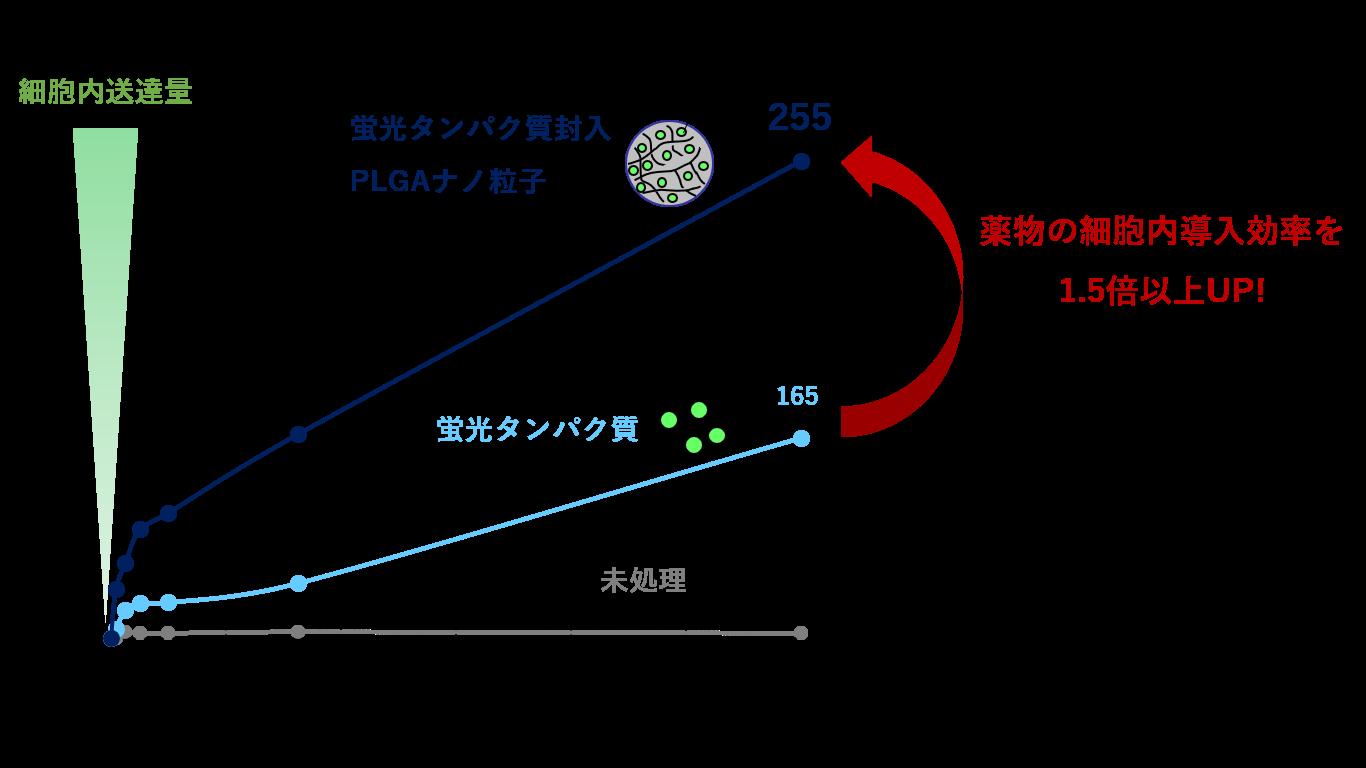 細胞導入性イメージ図